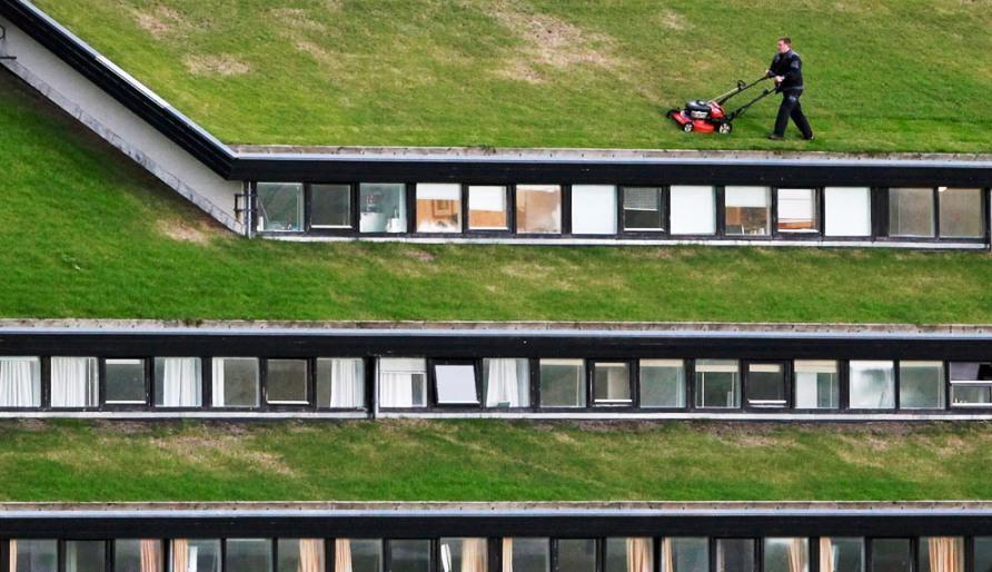 Рабочий косит траву на крыше правительственного здания недалеко от Torshavn, фото REUTERS / Bob Strong