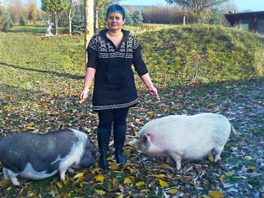 Вместе с Розали во дворе живёт ещё одна мини-свинья