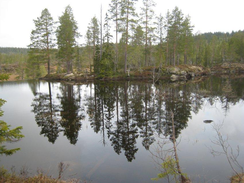 Река Kopper?a, рядом с которой ведутся раскопки