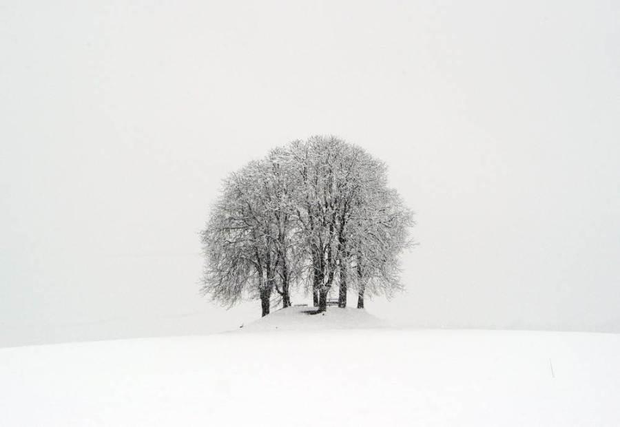 Заснеженный Winterberg рядом с Цюрихом, фото Steffen Schmidt / AP
