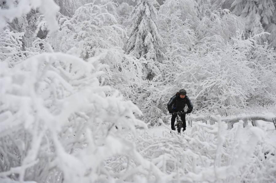 Велосипедист в немецком Taunus, фото Arne Dedert / AFP - Getty Images
