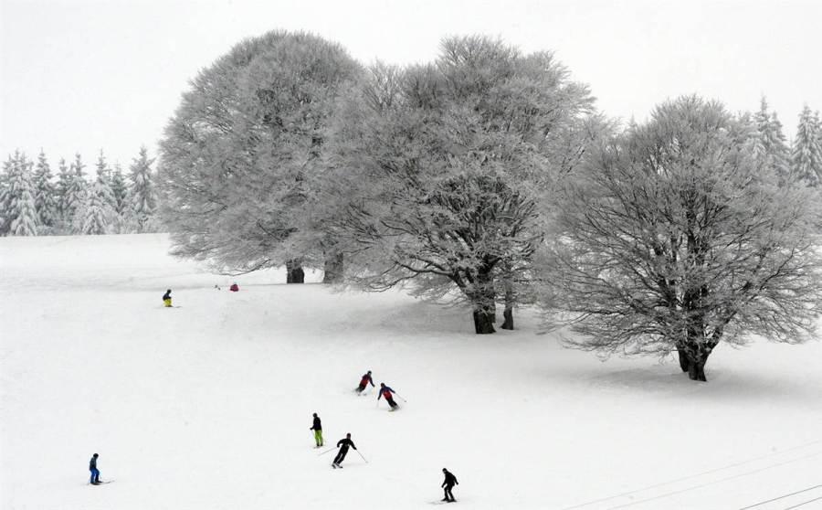 Лыжники в немецком Hofsgrund, фото Patrick Seeger / AFP - Getty Images