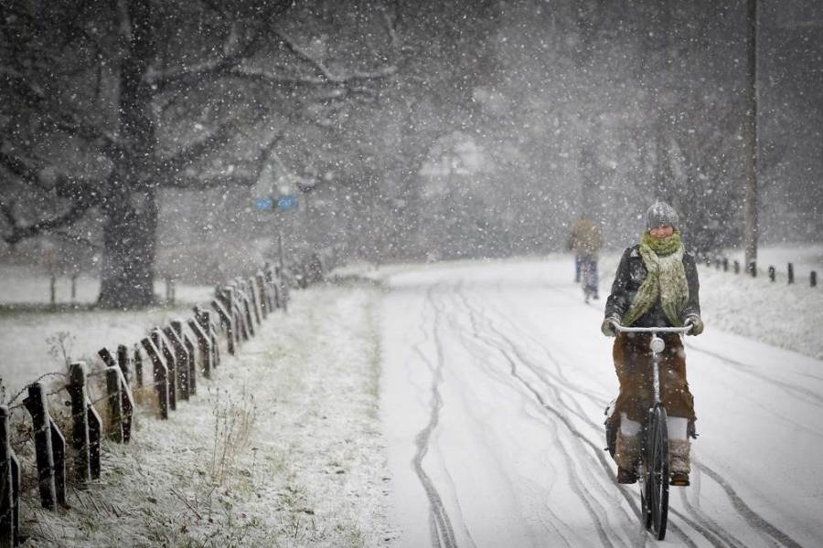 Велосипедистка в голландском городе Zeist, фото Jeroen Jumelet / EPA