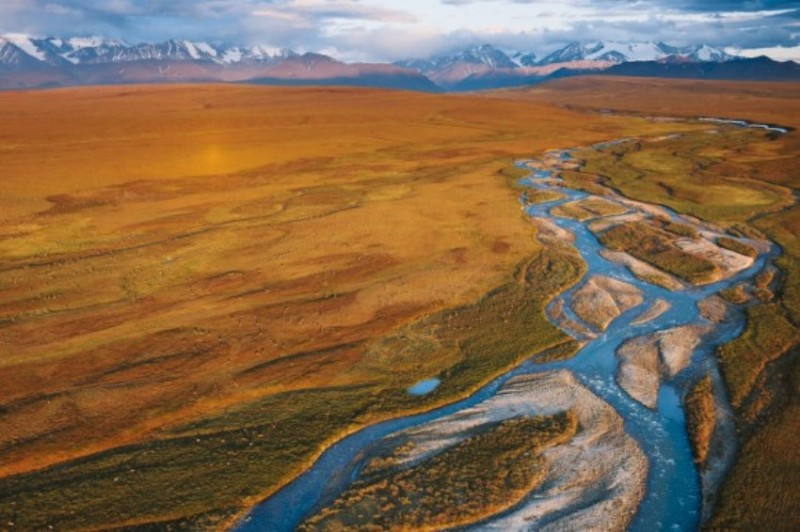 a history and role of artic national wildlife refuge