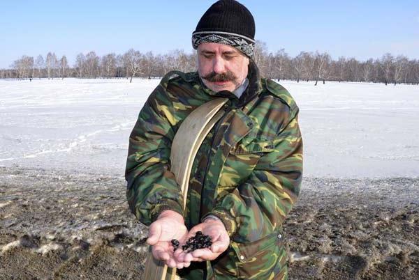 Учёные нашли уже около 100 обломков метеорита