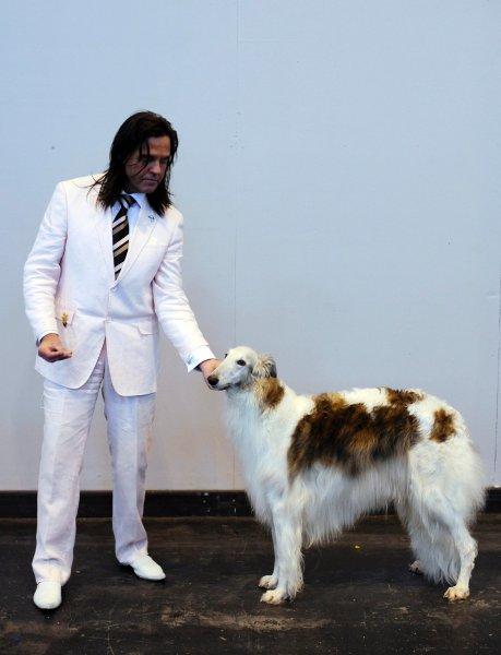 Выставка собак в Бирмингеме