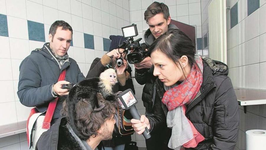 О маленькой обезьянке говорят по всему миру