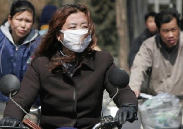 Новый штамм вируса птичьего гриппа обнаружили в Китае
