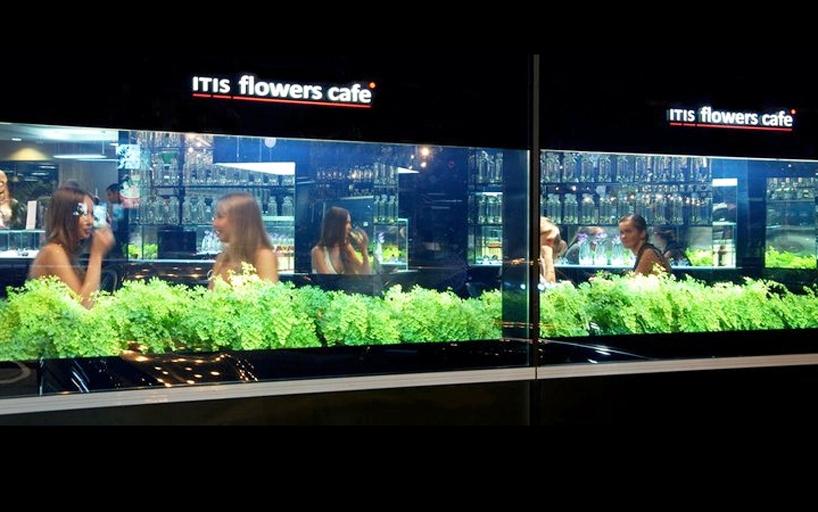 Цветочное кафе в Киеве