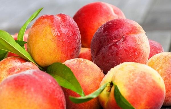 в Греции фермеры выбросили 47 тысяч тонн персиков