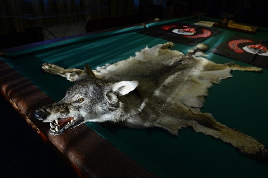 """В клубе """"Ночные волки"""""""