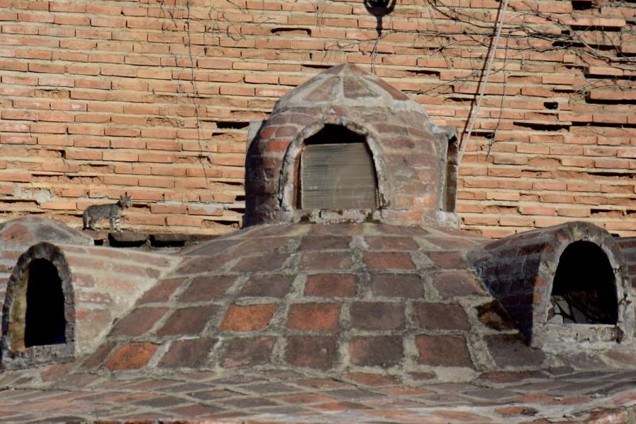 Экстремал на крыше бани