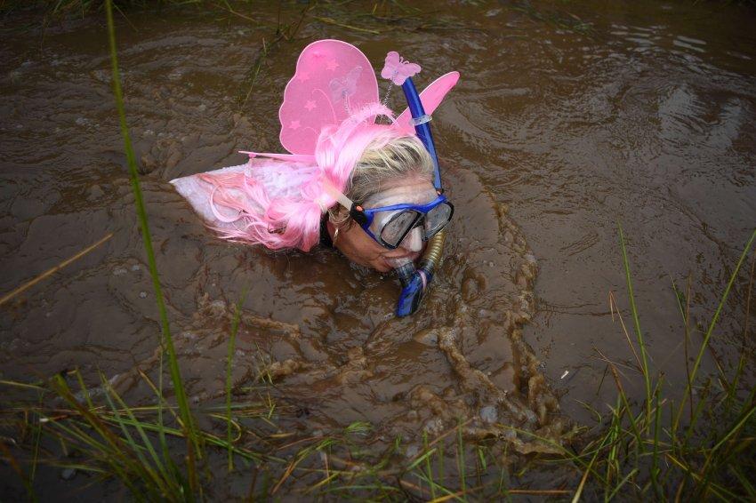 Чемпионат по плаванию в болоте