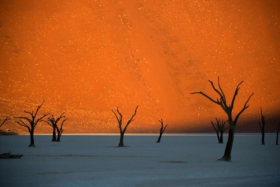 Пустыня Намиб в Намибии
