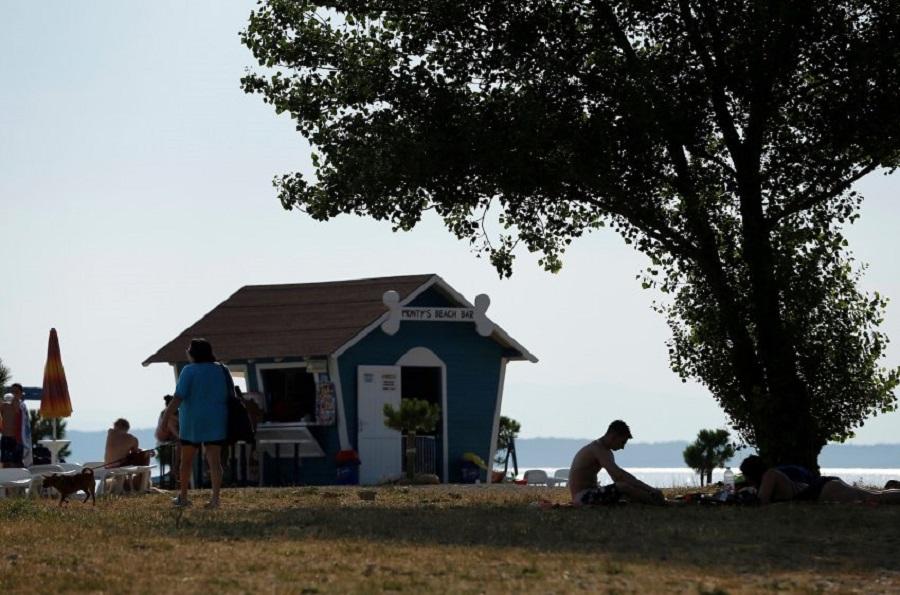 Пляж для собак