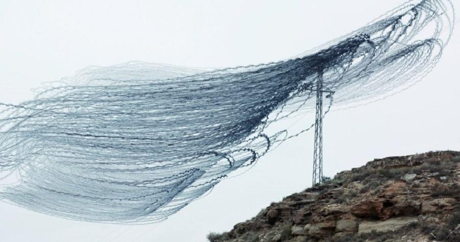 Альпийские вороны