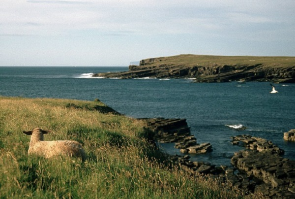 Остров Уэстрей