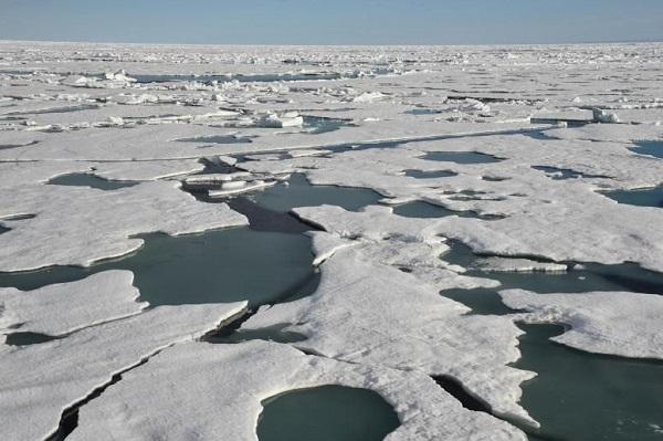 На Шпицбергене значительно потеплело